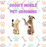 Doggi's Mobile Pet Grooming, Hollywood