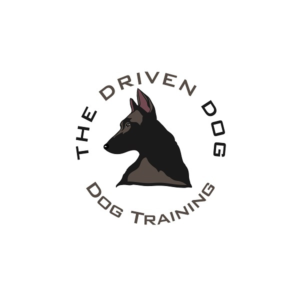 The Driven Dog of The Driven Dog 2436 E 4th St, Unit 768 - Photo 1 of 1