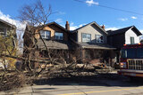 Emergency Tree Removal Services Five Star Tree Services 156 Duncan Rd