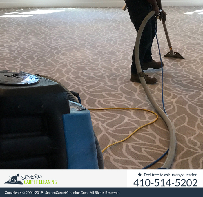 New Album of Severn Carpet Cleaning 7733 Telegraph Rd - Photo 3 of 10