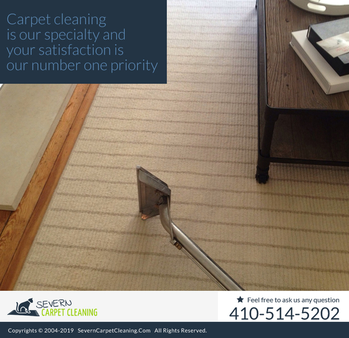 New Album of Severn Carpet Cleaning 7733 Telegraph Rd - Photo 4 of 10