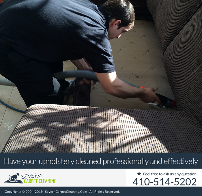 New Album of Severn Carpet Cleaning 7733 Telegraph Rd - Photo 9 of 10