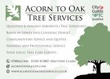 Pricelists of Acorn to Oak Tree Services