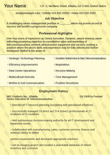 Executive Resume Director Executive Resume Writers San Fernando