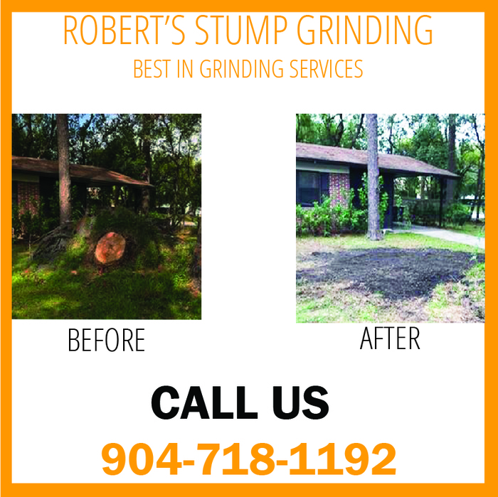 Stump Grinding Orange Park, Fl Stump Grinding Jacksonville, FL of Robert's Stump Grinding Robert's Stump Grinding - Photo 3 of 4