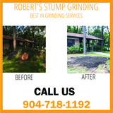 Stump Grinding Orange Park, Fl Robert's Stump Grinding Robert's Stump Grinding