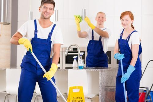 Profile Photos of Freshwater Cleaning Services Northern Beaches - Photo 2 of 3
