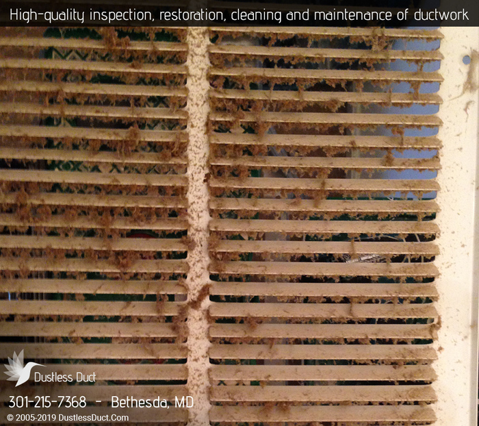 New Album of Dustless Duct | Air Duct Cleaning Bethesda 7849 Old Georgetown Rd - Photo 2 of 5