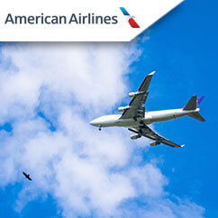 Profile Photos of American Airlines 2077 N Thornton Rd - Photo 3 of 4