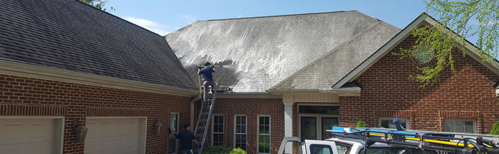 Roof Cleaning Soft Wash Profile Photos of ProClean Power & Soft Wash, LLC. 106 Park Dr - Photo 5 of 6