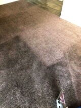Corona Carpet Cleaning LLC Goodyear