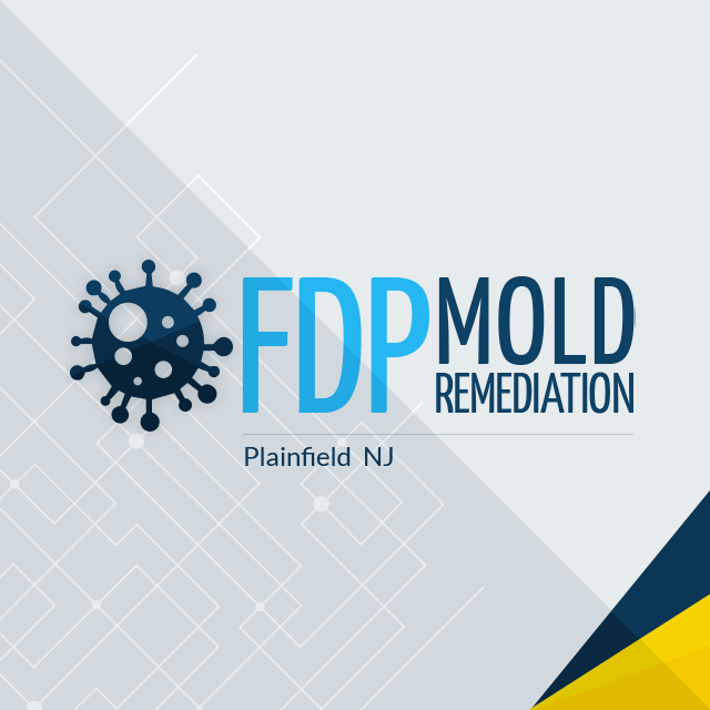 Profile Photos of FDP Mold Remediation | Mold Remediation Plainfield 1355 W Front St, - Photo 1 of 1