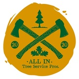 All In Tree Service, Woodstock