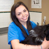 Profile Photos of Britannia Kingsland Veterinary Clinic