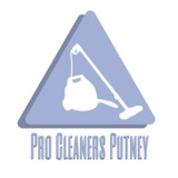 Pro Cleaners Putney