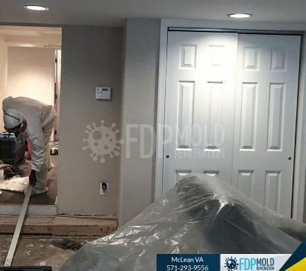 Profile Photos of FDP Mold Remediation | Mold Remediation McLean 8231 Crestwood Heights Dr - Photo 2 of 2