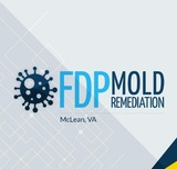 FDP Mold Remediation | Mold Remediation McLean, McLean