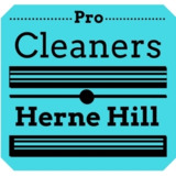 Pro Cleaners Herne Hill