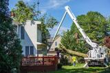 Tree Removal Austin - ATX Tree Pros 730 Wales Way