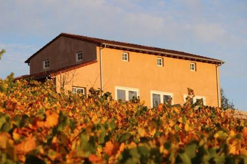 Profile Photos of Fog Crest Vineyard 7606 Occidental Road - Photo 2 of 4