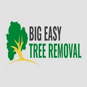 Profile Photos of Big Easy Tree Removal 625 Celeste St, Suite 504-B - Photo 1 of 10