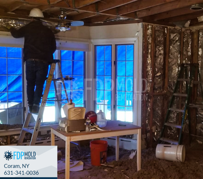 Profile Photos of FDP Mold Remediation 1 Charles Pond Dr, - Photo 8 of 20
