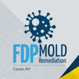 FDP Mold Remediation 1 Charles Pond Dr,
