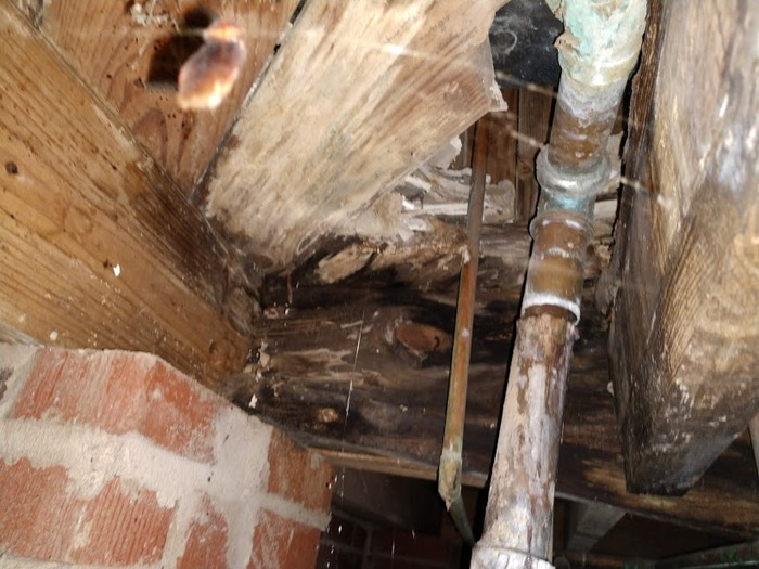 New Album of Crawlspace Medic of Charlotte 6012 Old Pineville Rd Suite J - Photo 3 of 3