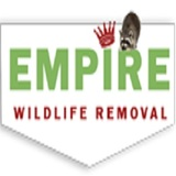 Richmondhillwildliferemoval - Raccoon Removal And Squrriel Removal, Richmond Hill
