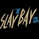 Slay The Bay Fishing Charters Of Tampa Bay 6332 S Renellie Ct