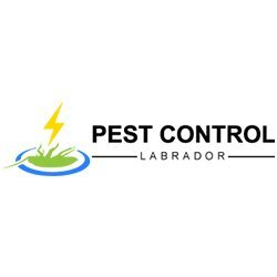 Profile Photos of Pest Control Labrador 106-116 Whiting St - Photo 1 of 1