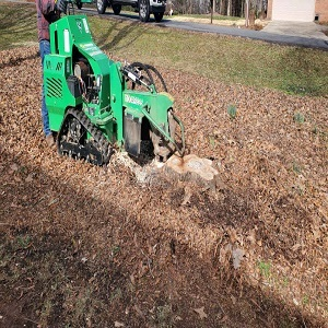 Profile Photos of Stump N Grind LLC 320 Speedway Pl NW - Photo 2 of 4