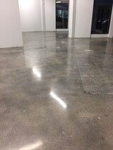 Polished Floors 1-850 Magnetic Drive