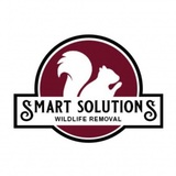 Smart Solutions Wildlife Removal, Roswell