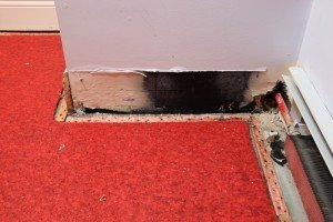 SD Water Damage Experts