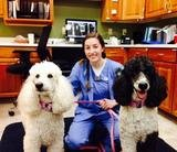 Profile Photos of Veterinary Specialty & Emergency Care