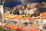 Explore, discover and enjoy! of Magnificent Morocco