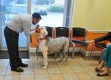 Profile Photos of Claws 'N' Paws Animal Hospital