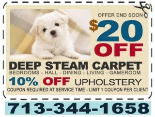 Cleaning Carpet Houston