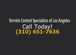 Termite Control Specialists of Los Angeles