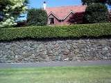 Profile Photos of The hedge and lawn cutting company