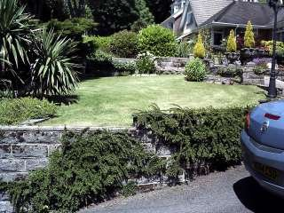 The hedge and lawn cutting company