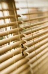 New Album of Acorn Blinds
