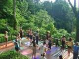 Samasati Nature Retreat 800 meters to Carbon 1