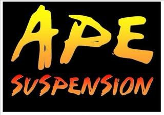 APE Springs and Suspension