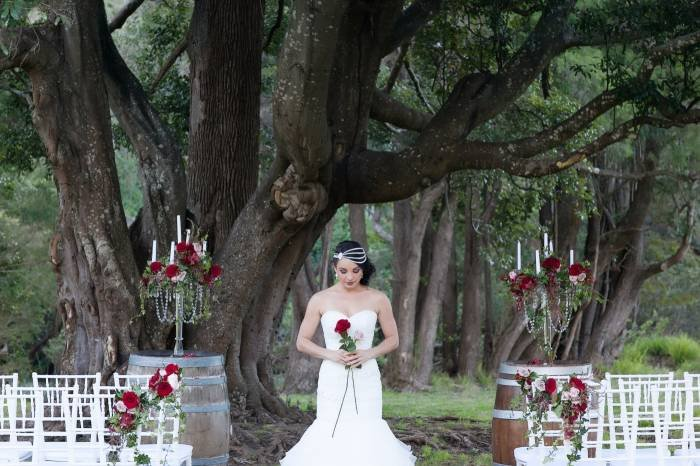 Canungra valley vineyard wedding