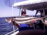 Profile Photos of Discovery Fishing Charters