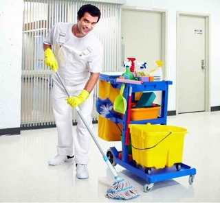 Clean To Shine Carpet Cleaning