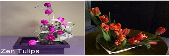 Profile Photos of Designs by Doe Specialty Florist and Gifts 5140 Cheshire  Road - Photo 48 of 48
