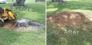Keith's Stump Removal